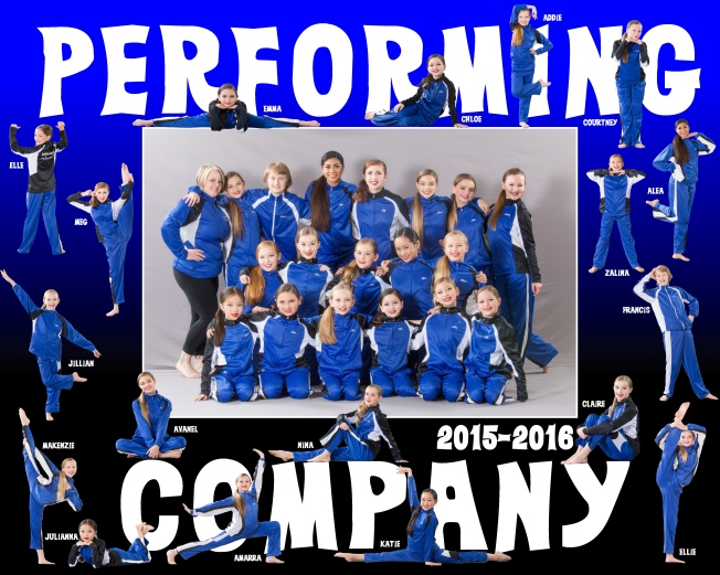 2015-2016 Perf Co Poster